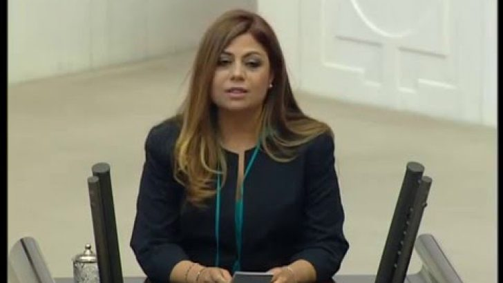 CHP'li Altıok İzmir'deki istismar dehşetini Meclis'e taşıdı!