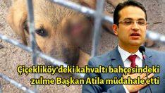 Çiçekliköy'deki kahvaltı bahçesindeki zulme Başkan Atila müdahale etti