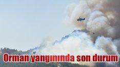 Orman yangınında son durum