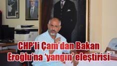CHP'li Çam'dan Bakan Eroğlu'na 'yangın' eleştirisi