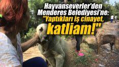 """Hayvanseverler'den Menderes Belediyesi'ne: """"Yaptıkları iş cinayet, katliam!"""""""