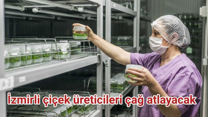 İzmirli çiçek üreticileri çağ atlayacak