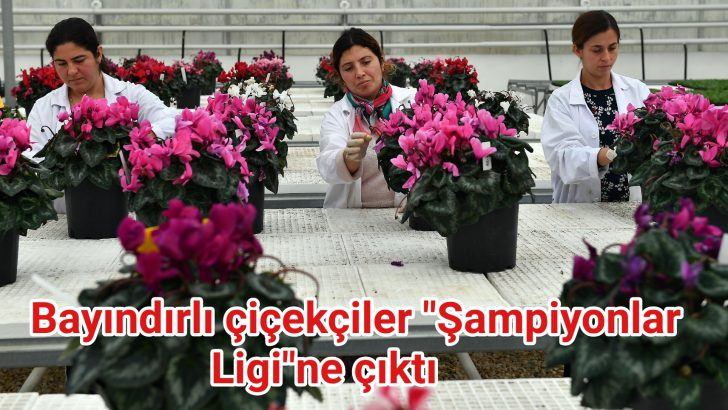 """Bayındırlı çiçekçiler """"Şampiyonlar Ligi""""ne çıktı"""