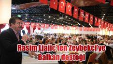 Rasim Ljajic'ten Zeybekci'ye Balkan desteği