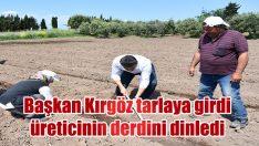 Dikili Belediye Başkanı Adil Kırgöz, çat kapı ziyaretleri kapsamında tarlada üreticiyle bir araya geldi.