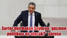 """Serter'den Bakan Soylu'ya """"göçmen politikası neolacak?"""" sorusu"""