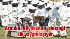 """Arıcılık """"Büyükşehir"""" desteği ile yaygınlaşıyor"""