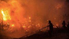 Karaburun yangını kontrol altına alındı.