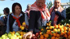 Karaburun'da 12'nci kez mandalina   buluşması