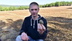 Doğal Tarım Çiftliği'nin ünü,  Türkiye sınırlarını aştı
