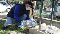 Gaziemir'de can dostlara mama ve su desteği