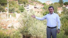 Bergama'da milyonluk projelerle buluşma heyecanı