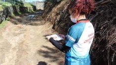 Oryantiring yarışları Bergama Kozak Yaylası'nın eşsiz doğasında yapıldı