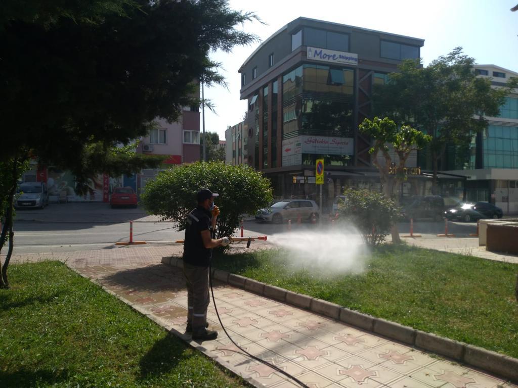 Aliağa Belediyesi Sivrisinekle Mücadelesini Sürdürüyor