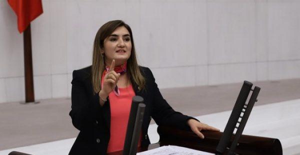"""CHP İzmir Milletvekili Kılıç: """"Salgın içeride de dışarıda da yönetilemiyor"""""""