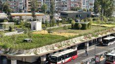 İzmir'de büyük yapılarda yağmur suyu hasadı ve yeşil çatı uygulaması